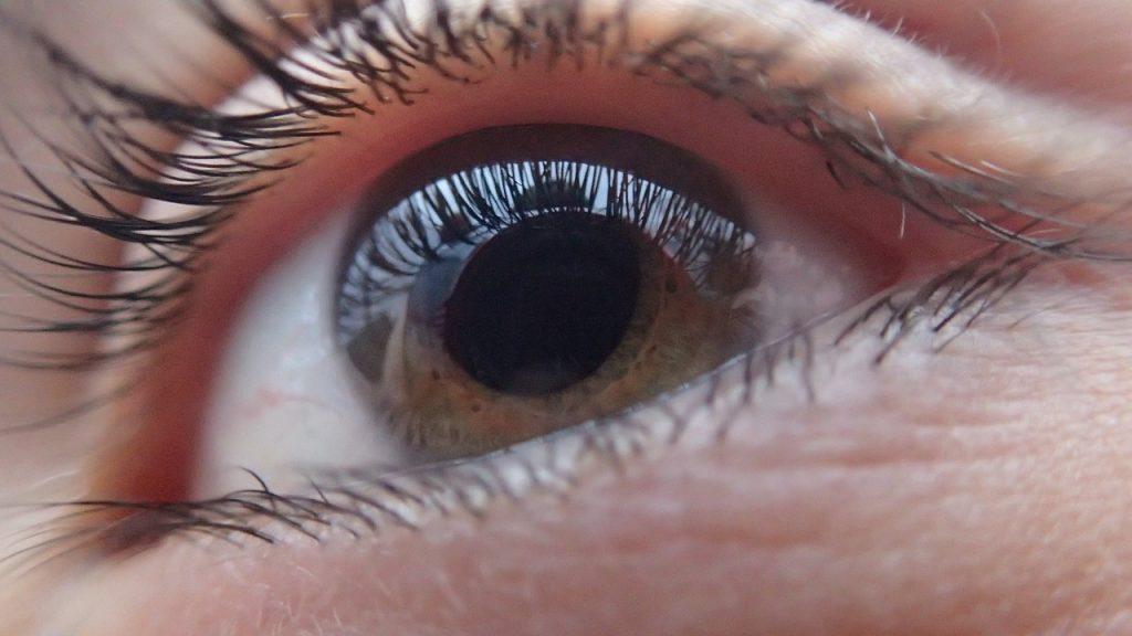 eye, human, face
